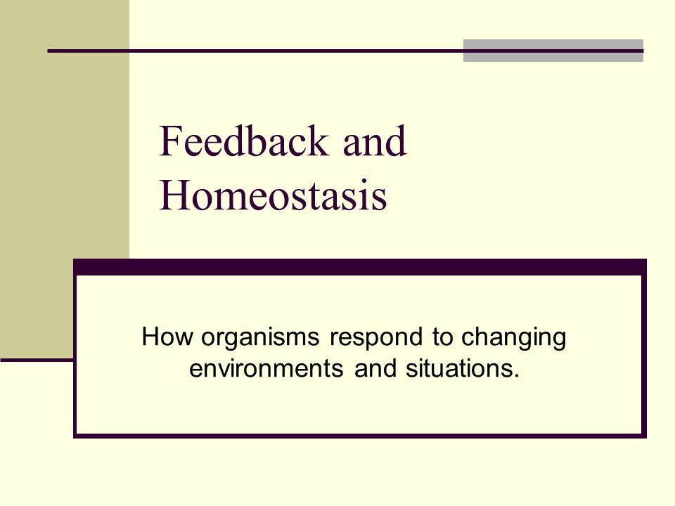 Feedback and Homeostasis