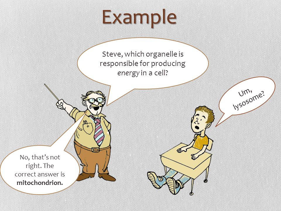 Example Steve, which organelle is responsible for producing energy in a cell Um, lysosome
