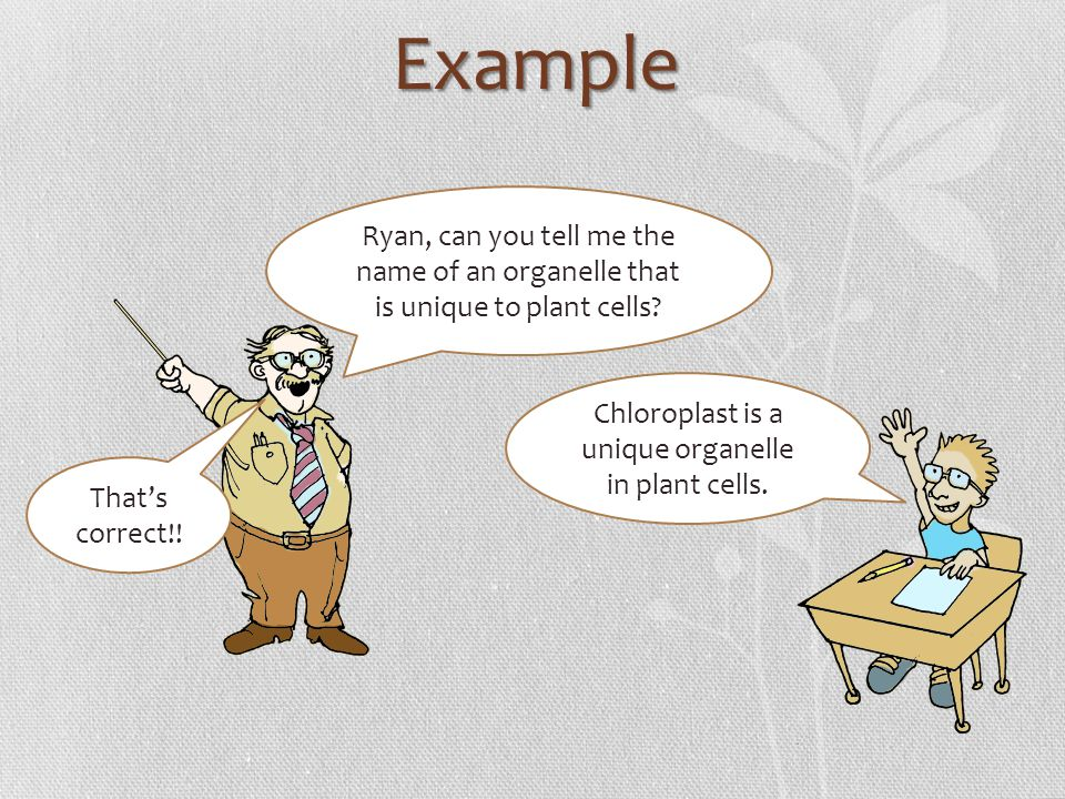 Chloroplast is a unique organelle in plant cells.
