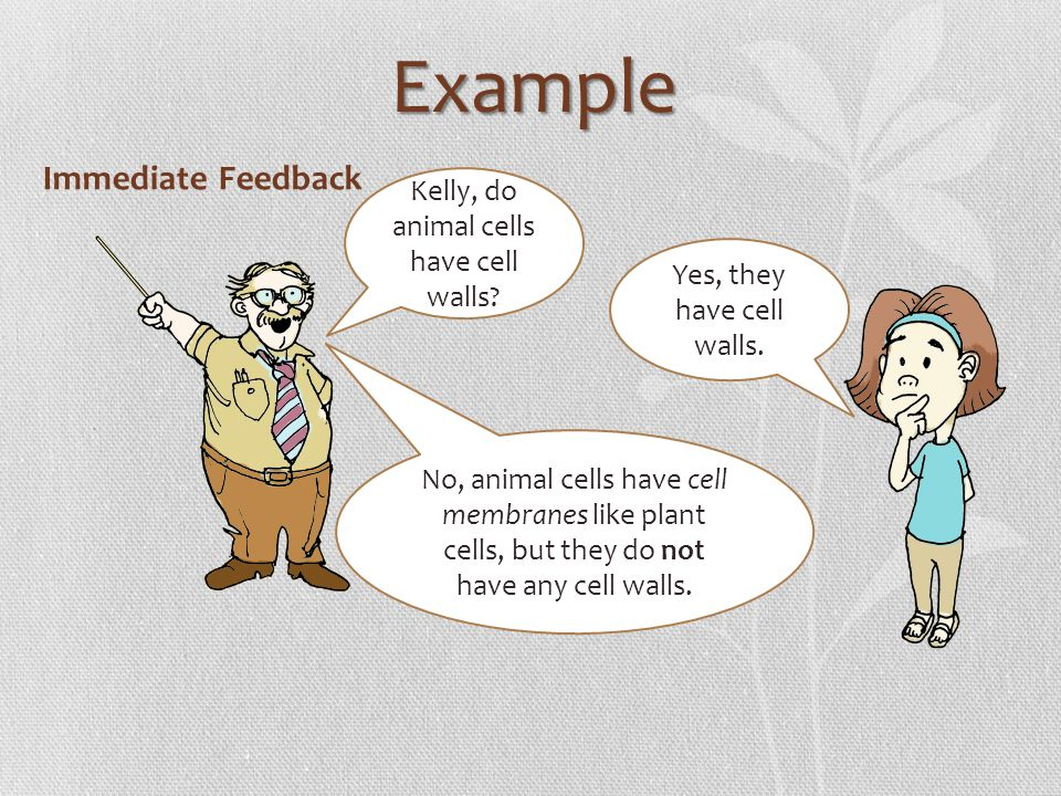 Example Immediate Feedback Kelly, do animal cells have cell walls