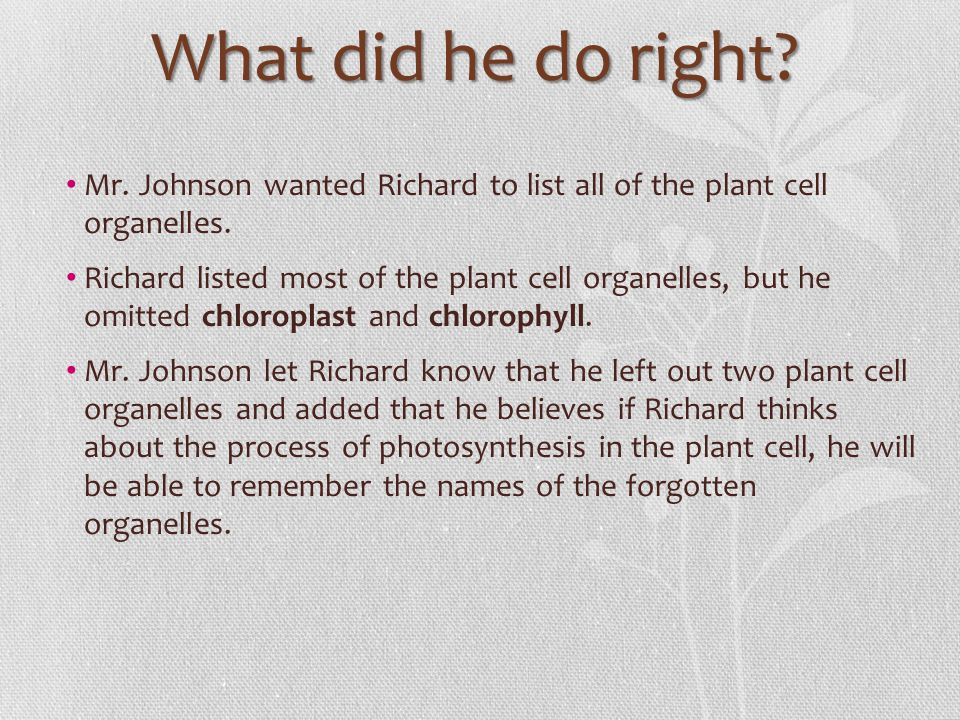 What did he do right Mr. Johnson wanted Richard to list all of the plant cell organelles.