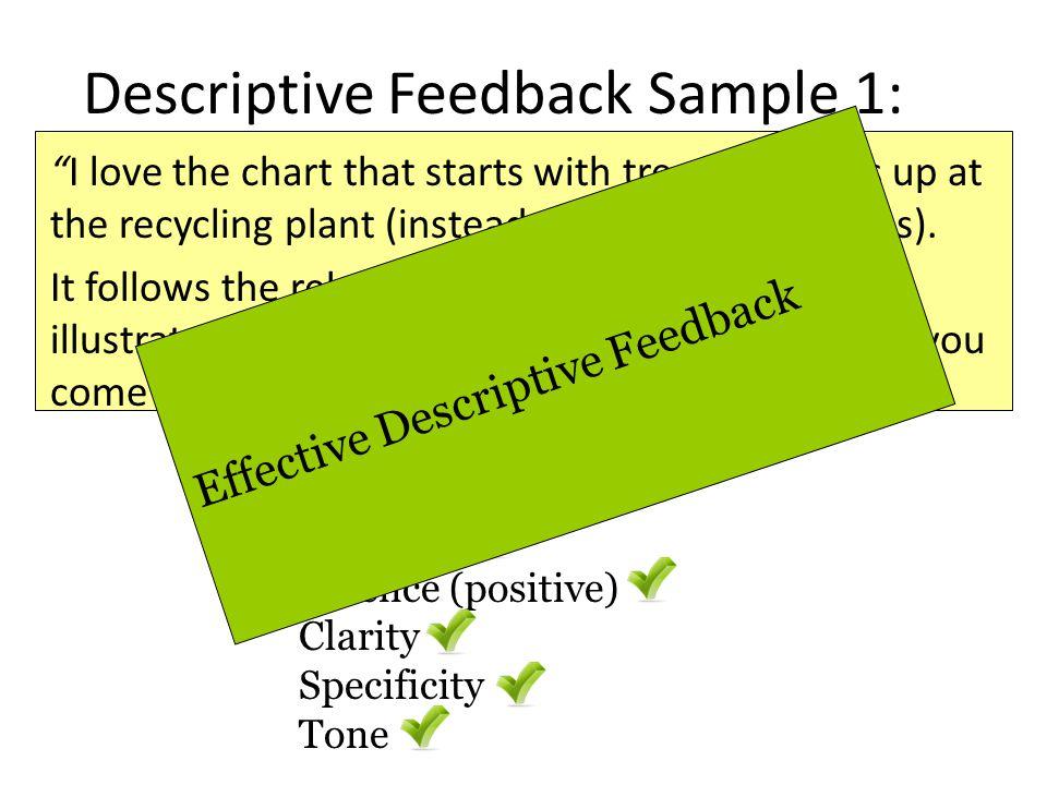 Descriptive Feedback Sample 1: