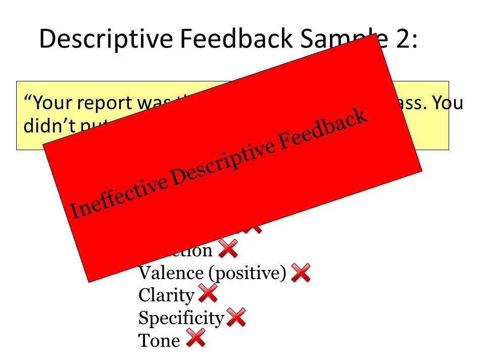 Descriptive Feedback Sample 2: