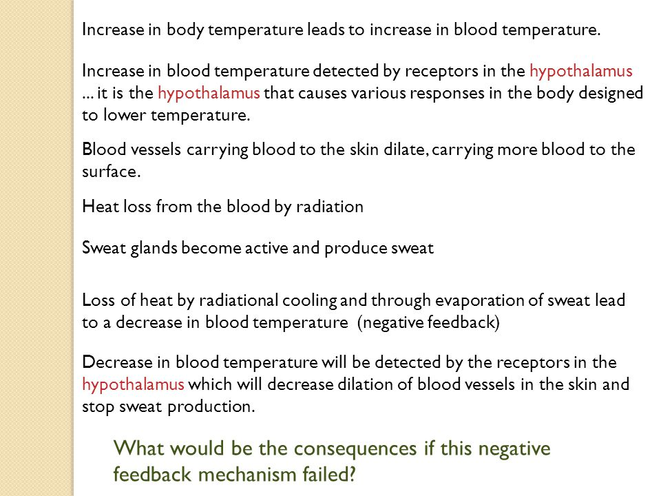 Increase in body temperature leads to increase in blood temperature.