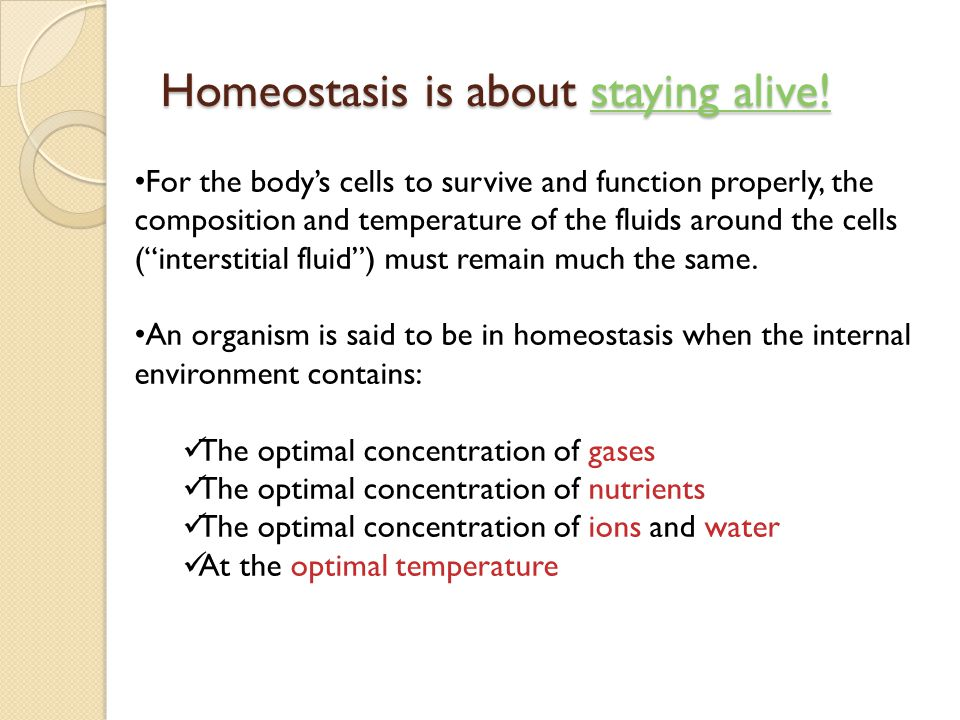 Homeostasis is about staying alive!