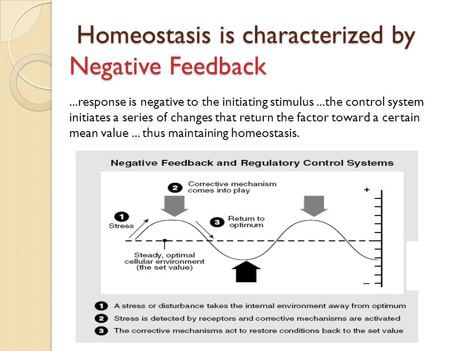 Homeostasis is characterized by Negative Feedback