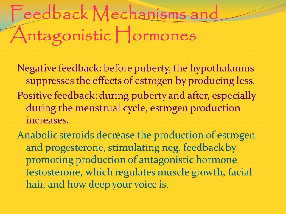 Feedback Mechanisms and Antagonistic Hormones