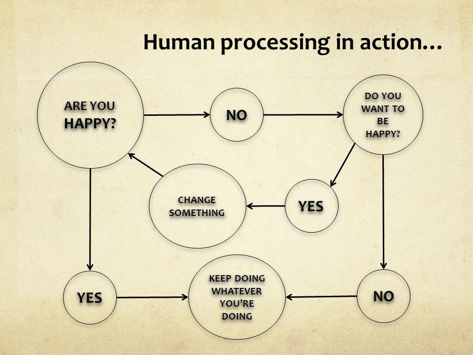 Human processing in action…