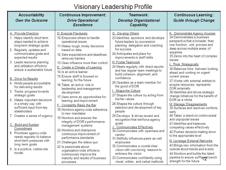 Visionary Leadership Profile