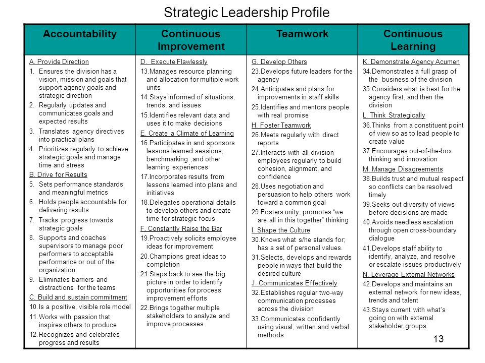 Strategic Leadership Profile