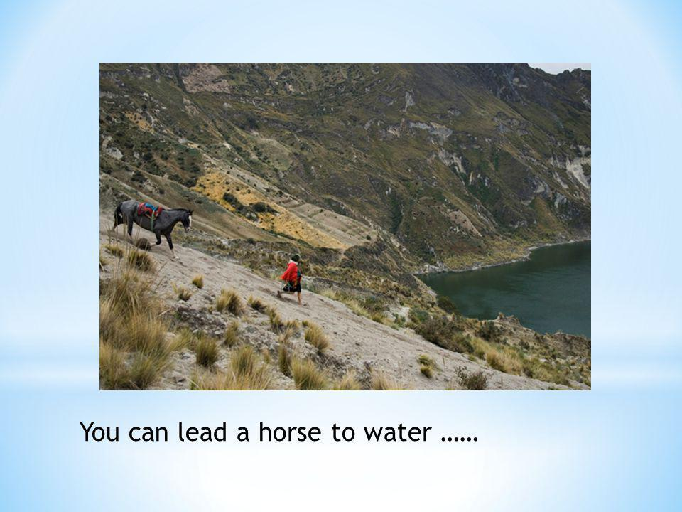 You can lead a horse to water ……