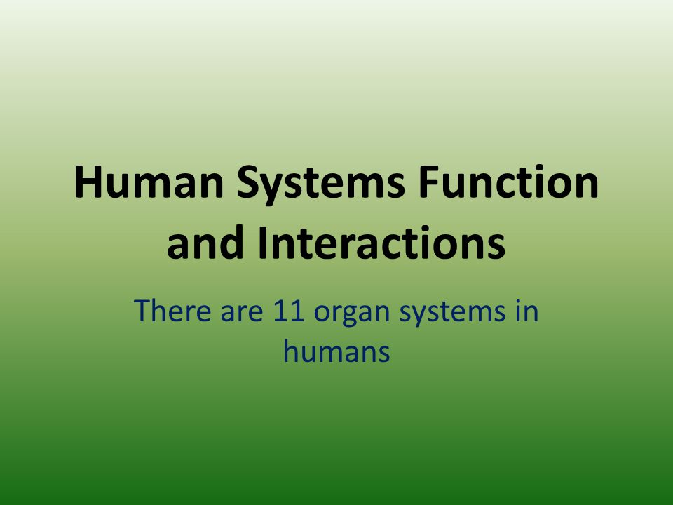 Human Systems Function and Interactions