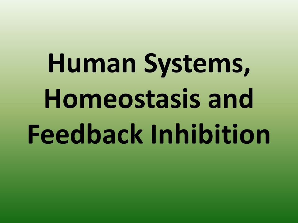 Human Systems, Homeostasis and Feedback Inhibition