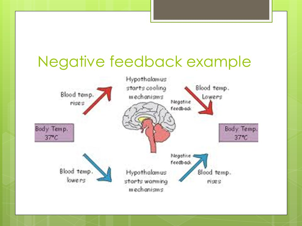 Negative feedback example