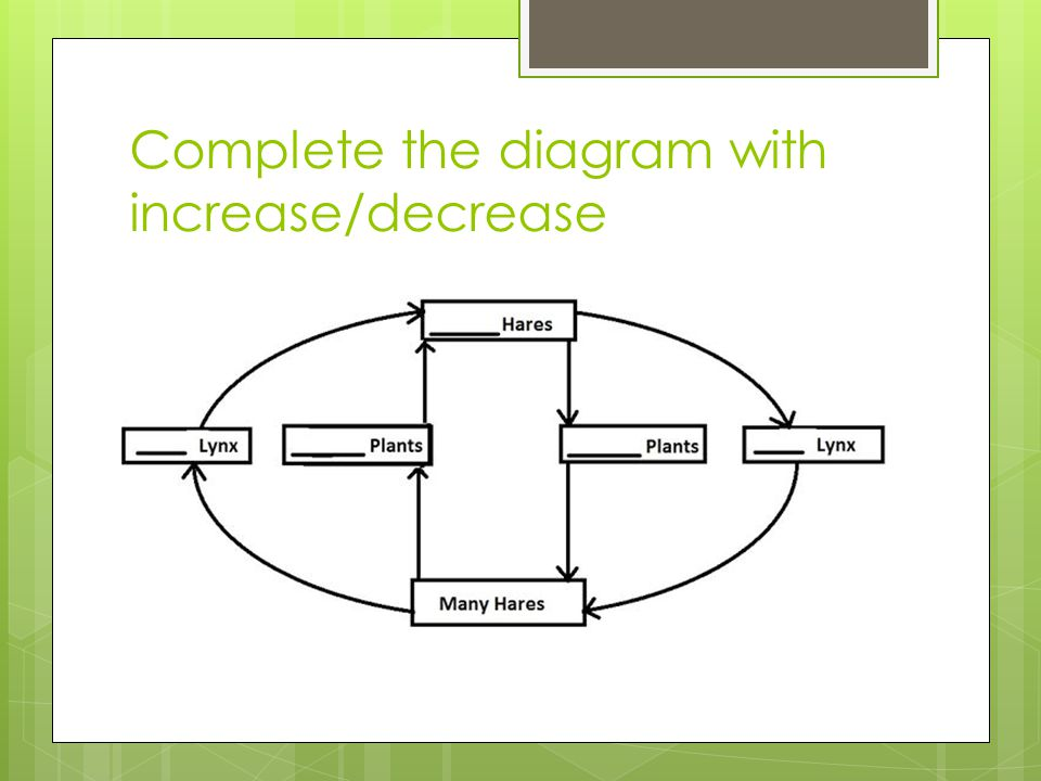 Complete the diagram with increase/decrease