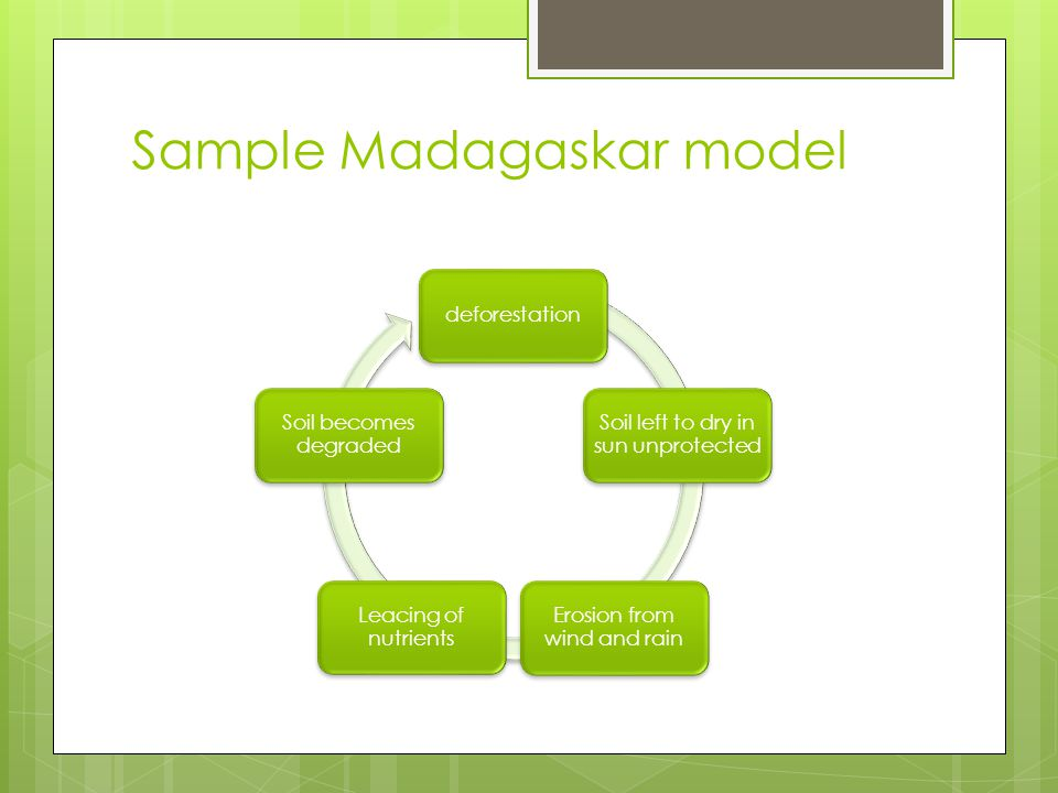 Sample Madagaskar model