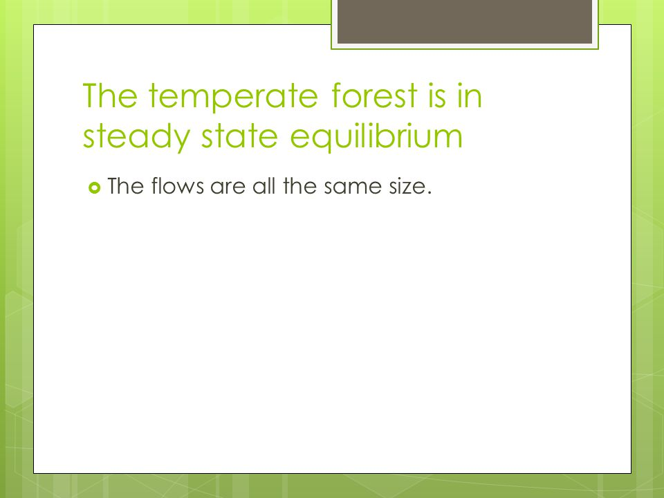 The temperate forest is in steady state equilibrium