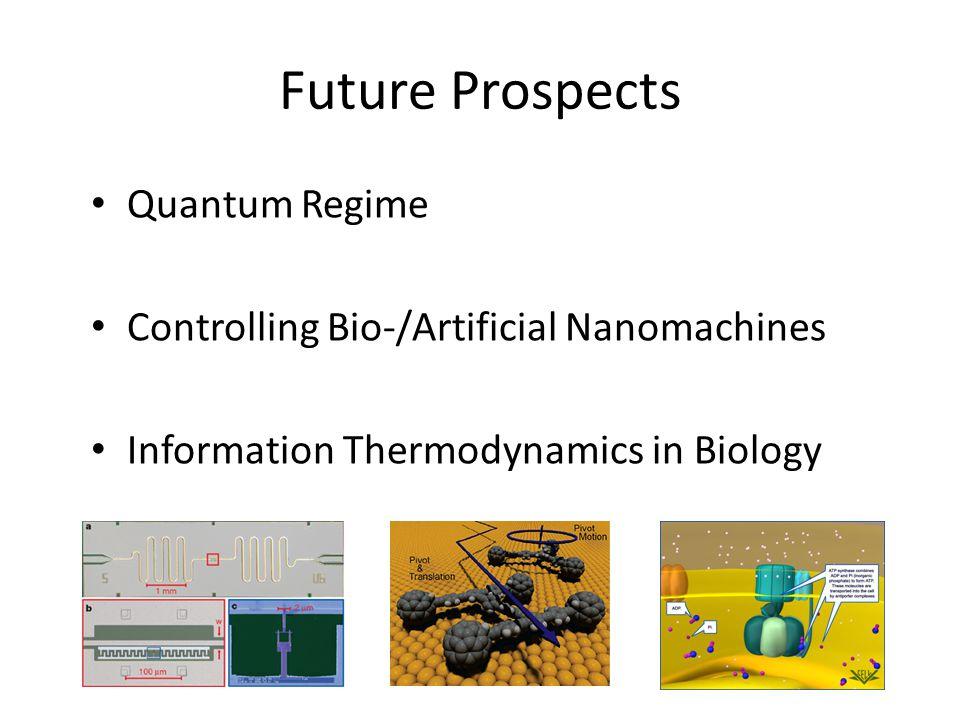 Future Prospects Quantum Regime