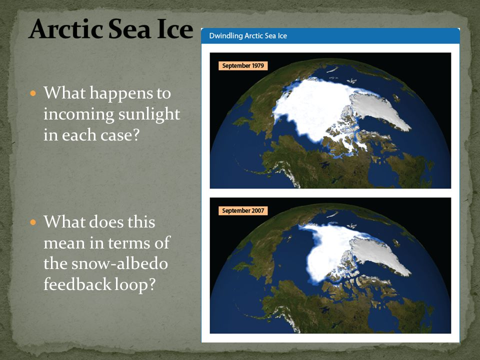 Arctic Sea Ice What happens to incoming sunlight in each case