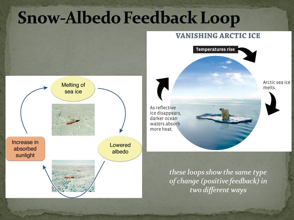 Snow-Albedo Feedback Loop