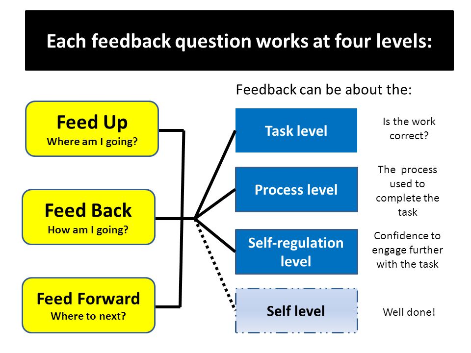 Each feedback question works at four levels: