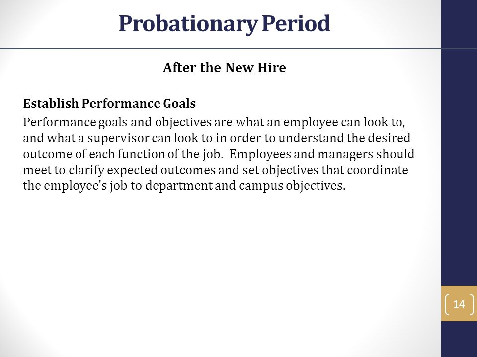 Probationary Period After the New Hire Establish Performance Goals