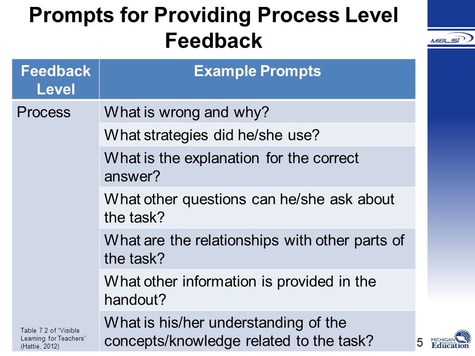 Prompts for Providing Process Level Feedback