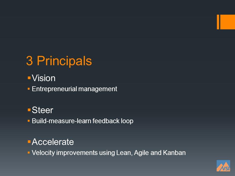 3 Principals Vision Steer Accelerate Entrepreneurial management