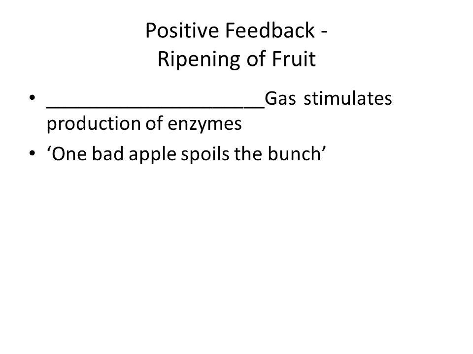 Positive Feedback - Ripening of Fruit