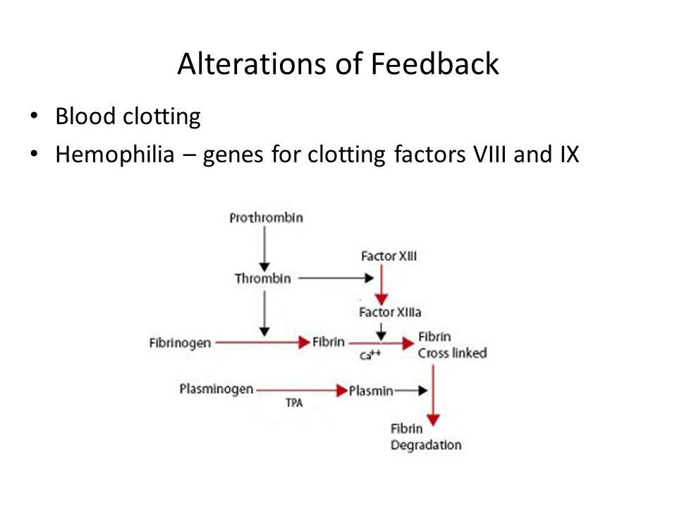Alterations of Feedback