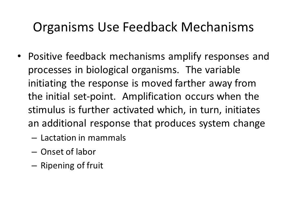 Organisms Use Feedback Mechanisms
