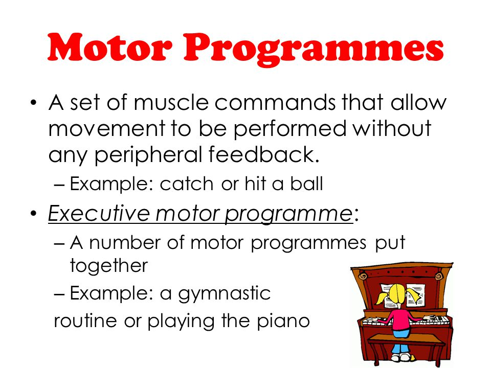 Motor Programmes A set of muscle commands that allow movement to be performed without any peripheral feedback.