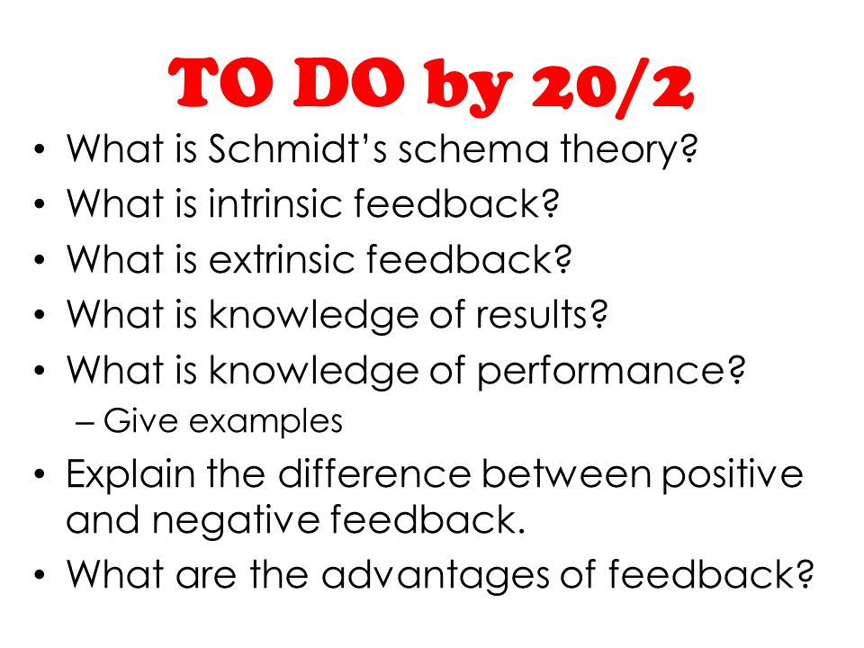 TO DO by 20/2 What is Schmidt's schema theory