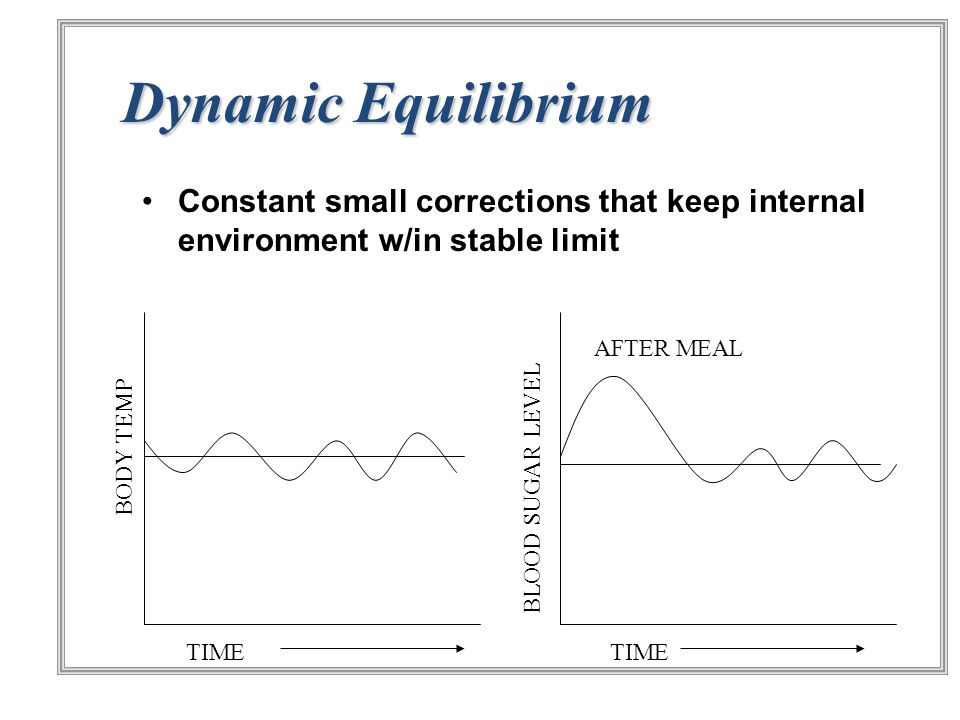 Dynamic Equilibrium Constant small corrections that keep internal environment w/in stable limit. AFTER MEAL.