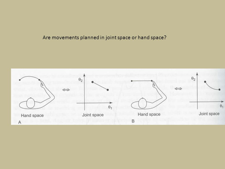 Are movements planned in joint space or hand space