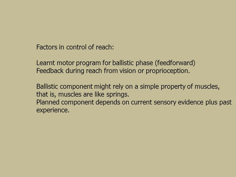 Factors in control of reach: