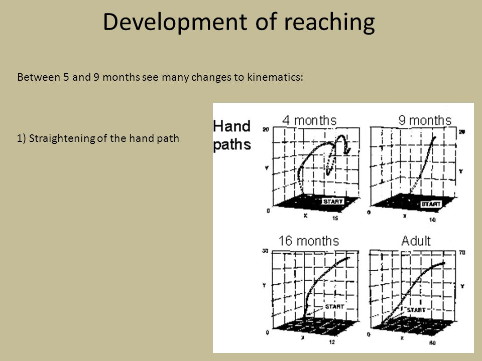 Development of reaching