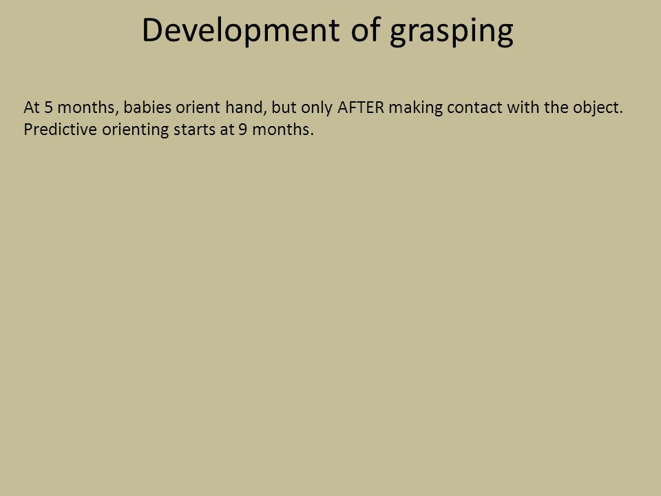 Development of grasping
