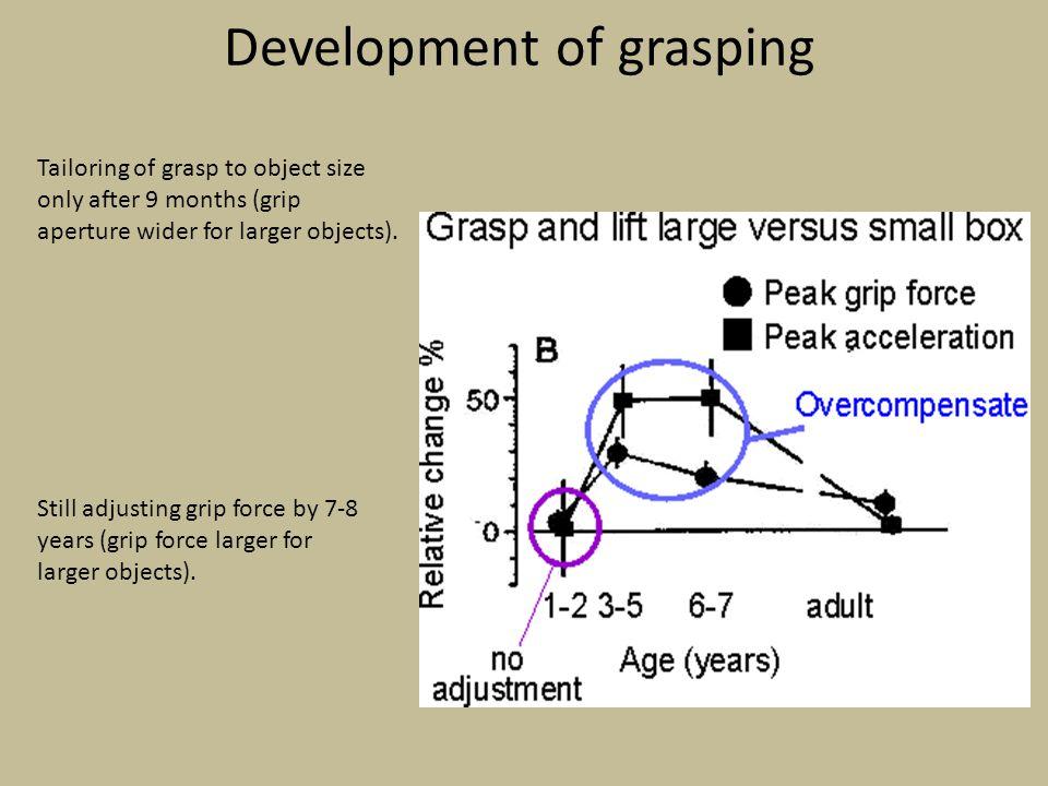 Development of grasping