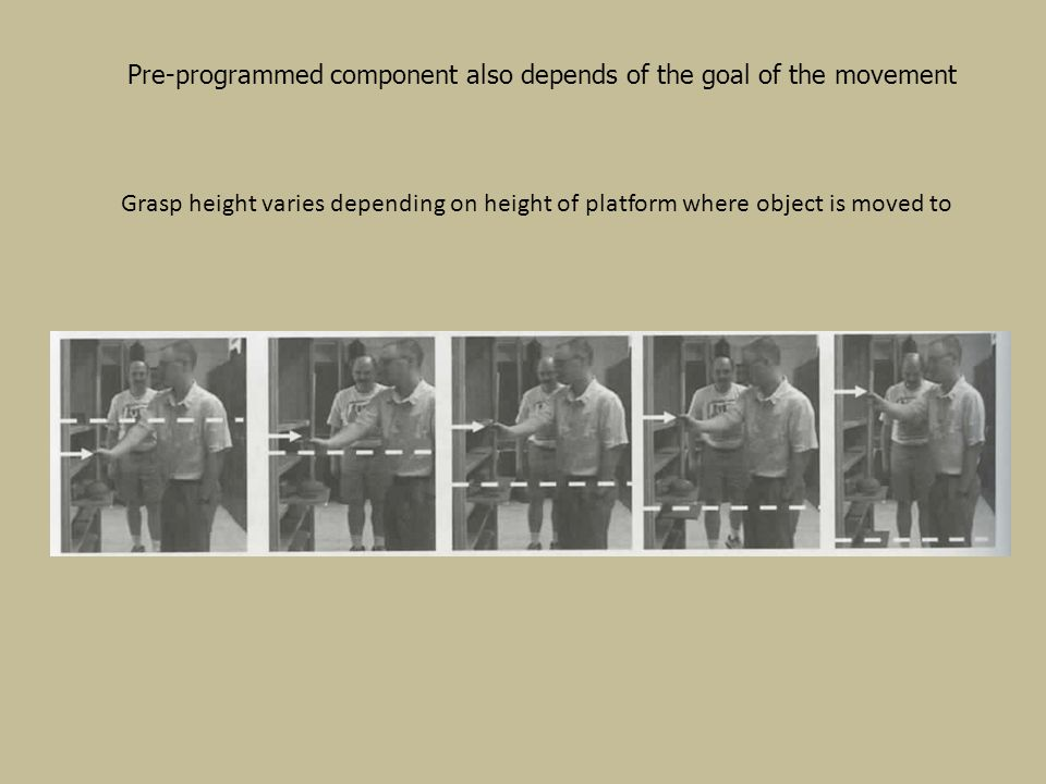 Pre-programmed component also depends of the goal of the movement