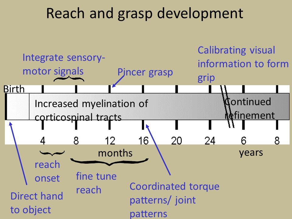 Reach and grasp development
