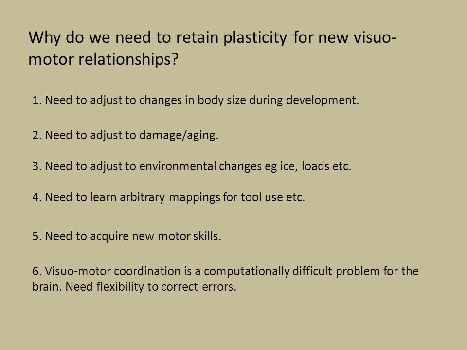 Why do we need to retain plasticity for new visuo-motor relationships
