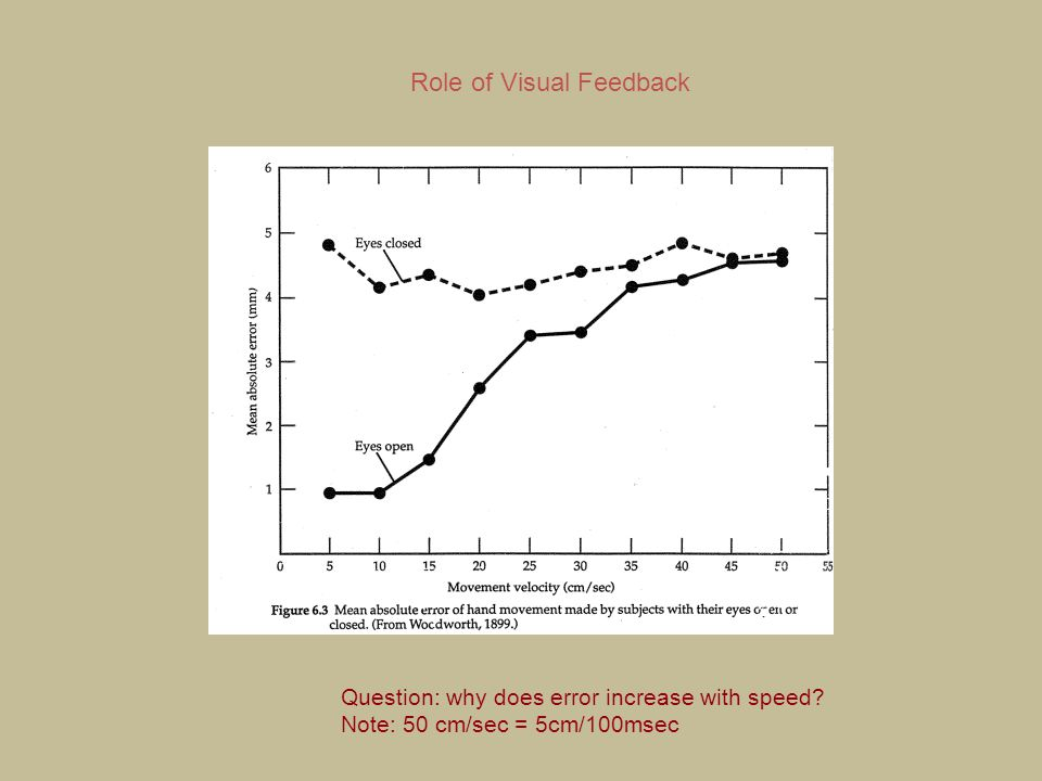Role of Visual Feedback