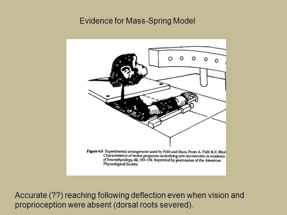 Evidence for Mass-Spring Model