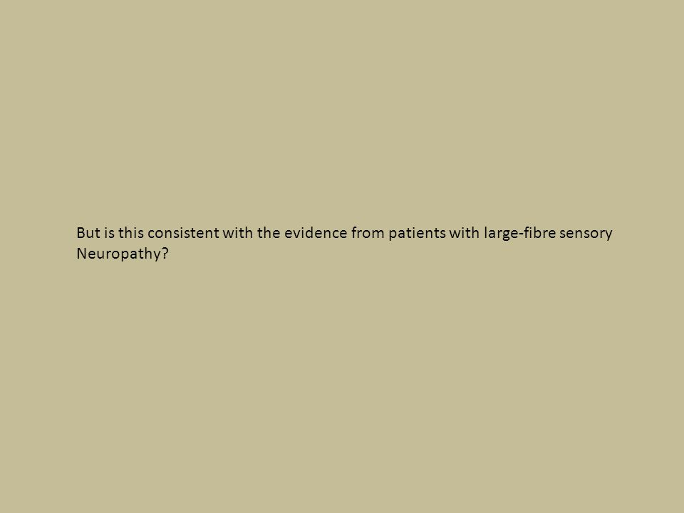 But is this consistent with the evidence from patients with large-fibre sensory