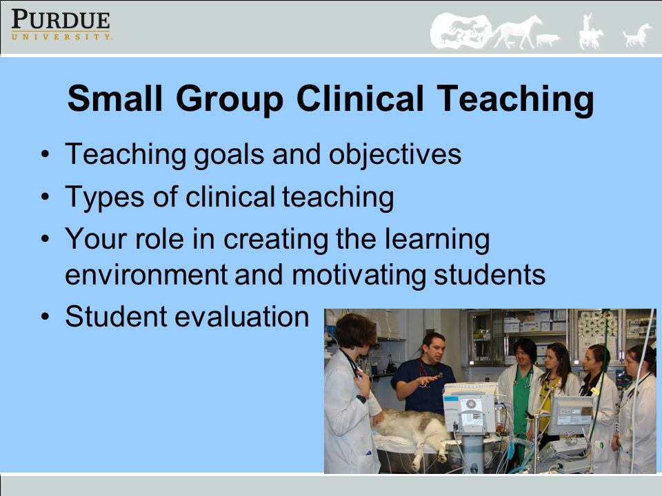 Small Group Clinical Teaching