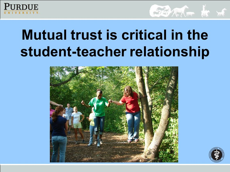 Mutual trust is critical in the student-teacher relationship