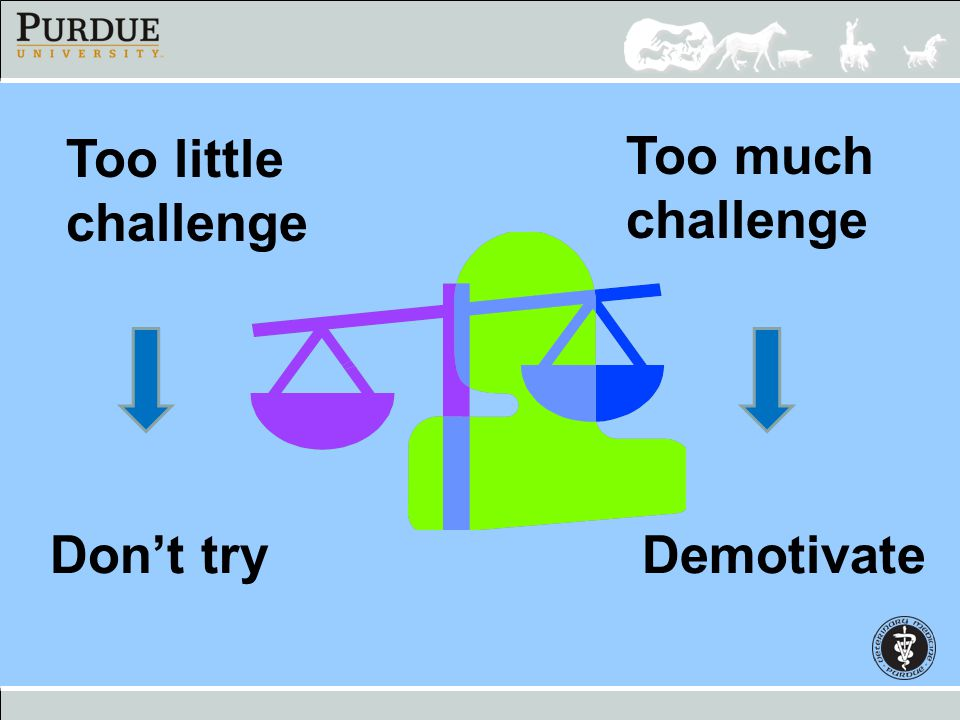 Too little challenge Too much challenge Don't try Demotivate