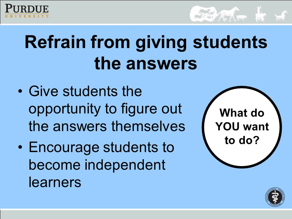 Refrain from giving students the answers