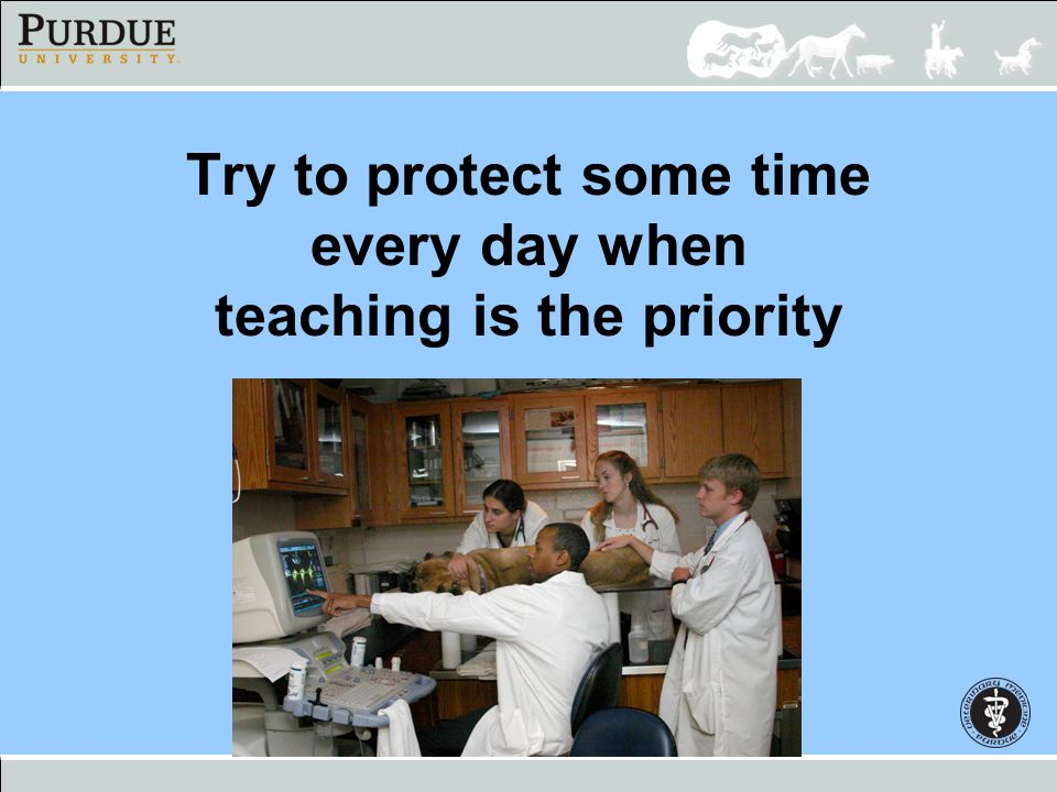 Try to protect some time every day when teaching is the priority